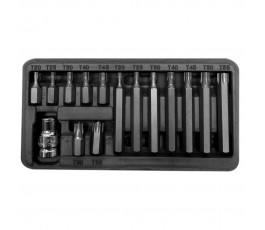 proline zestaw 15 końcówek 10mm t20-t55 30/75mm 10745